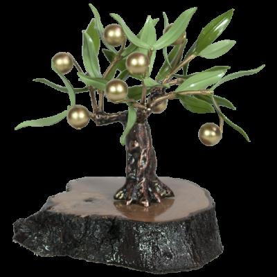 olivo decorativo