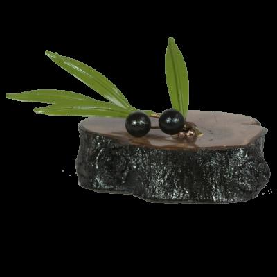 Rama de oliva